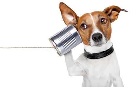 Il grande valore della comunicazione in azienda